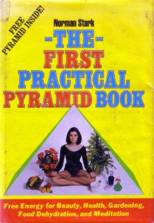 the first practical pyramid book cover