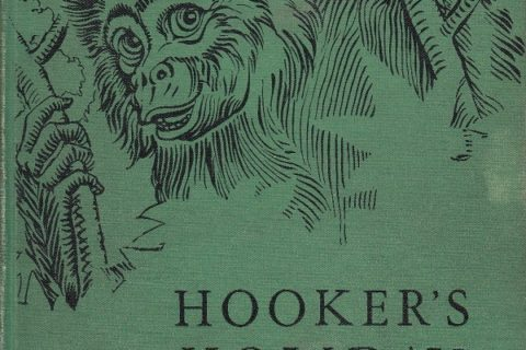 Hooker's Holiday cover