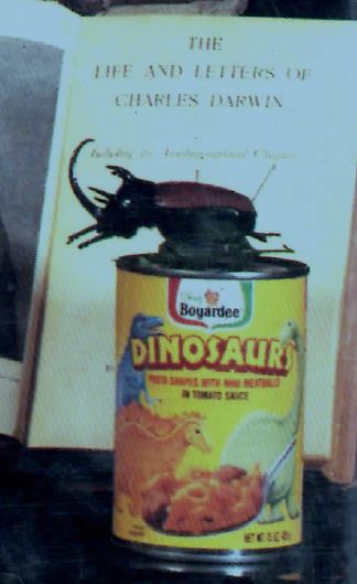 Can of Chef Boyardee and a toy dinosaur