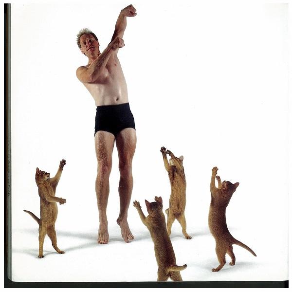 Man dances with four cats