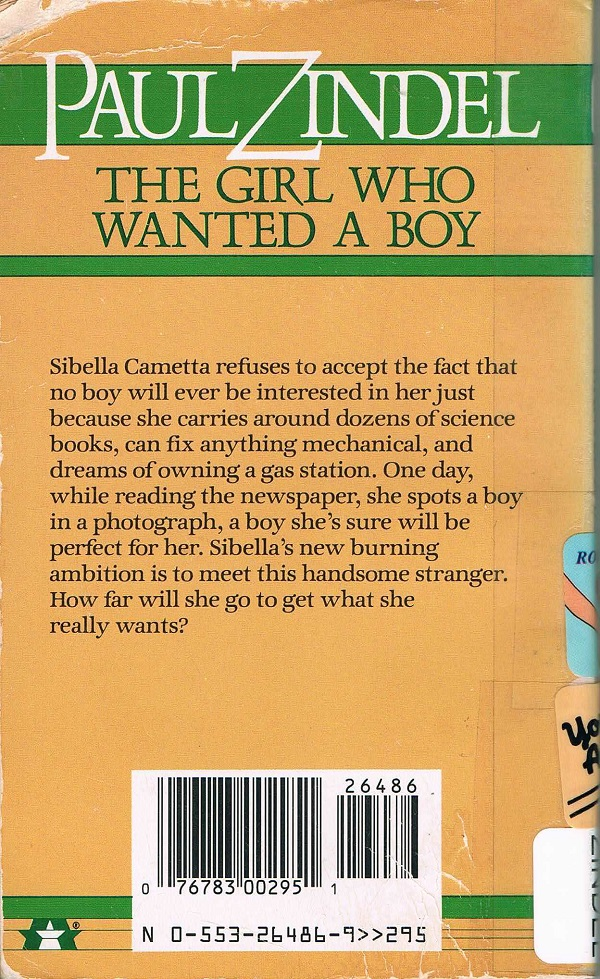 Girl who wanted a boy back cover
