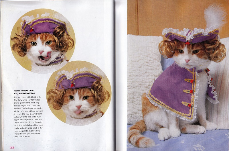 Cat with hat, coat, frilled shirt