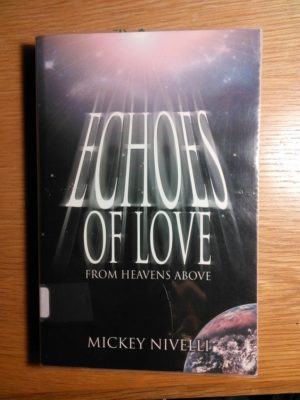 Echoes of Love cover