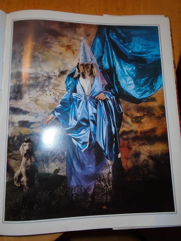 Dog Fairy God Mother