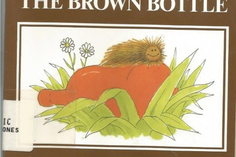 The Brown Bottle cover
