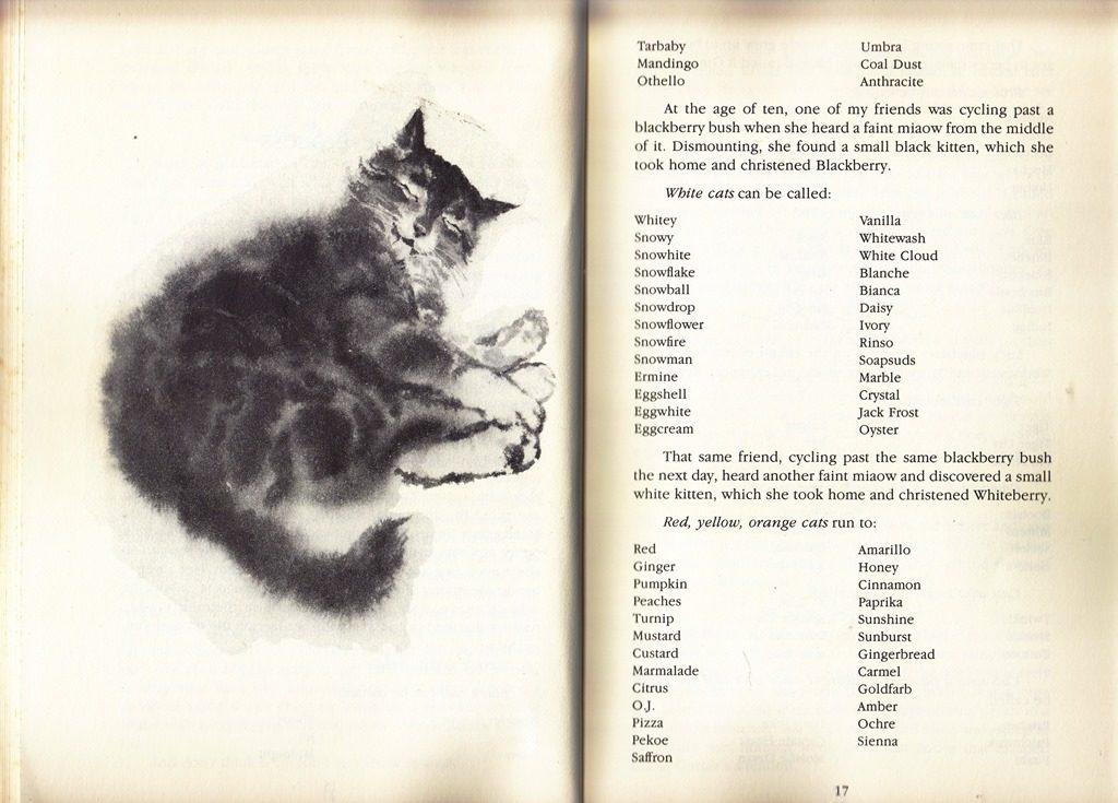 names for cats