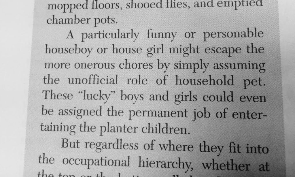 Life in the South During the Civil War - houseboy or house girl