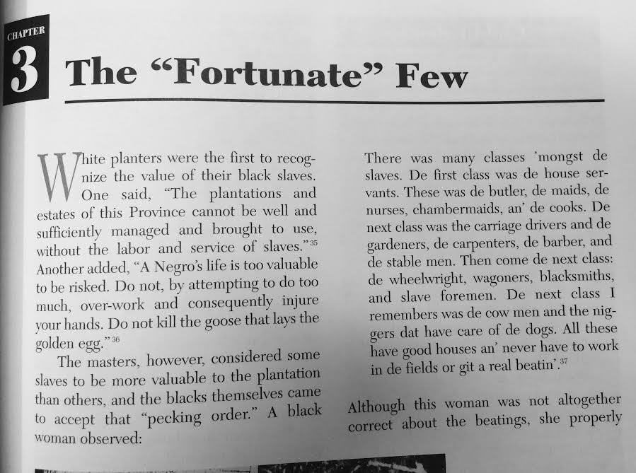 """Life in the South During the Civil War - the """"fortunate"""" few"""
