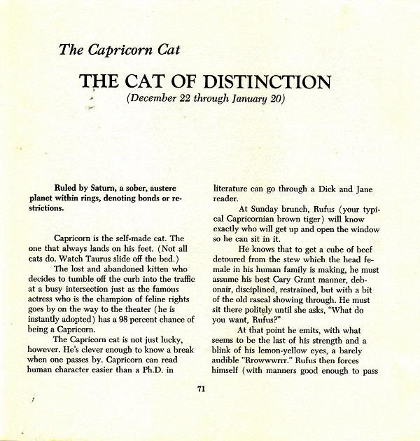 Capricorn - the cat of distinction