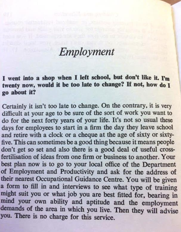 employment questions