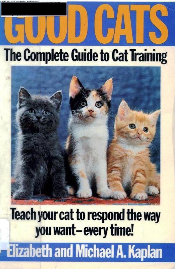complete guide to cat training cover