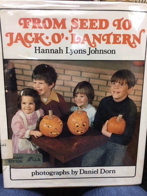 From Seed to Jack o Lantern cover