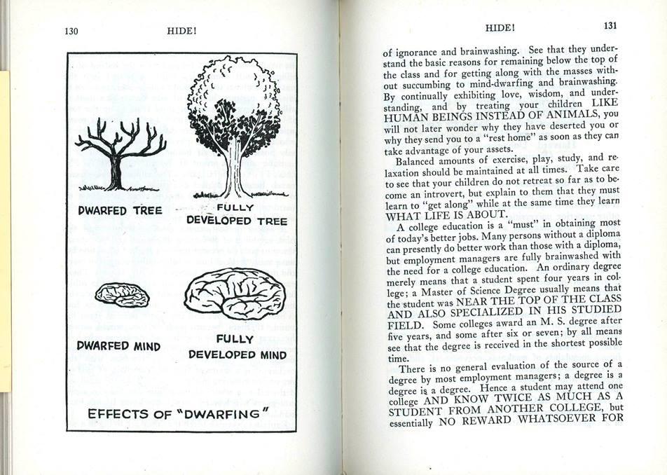 healthy brains