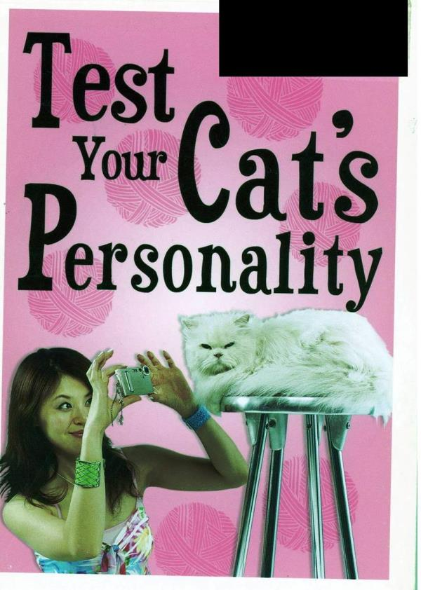 test your cat's personality