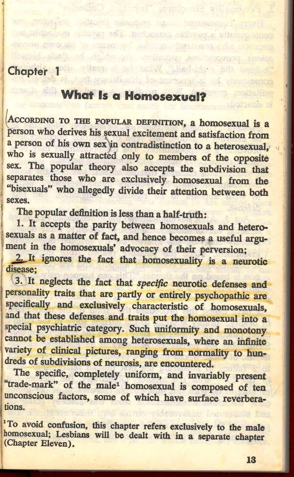 what is a homosexuality