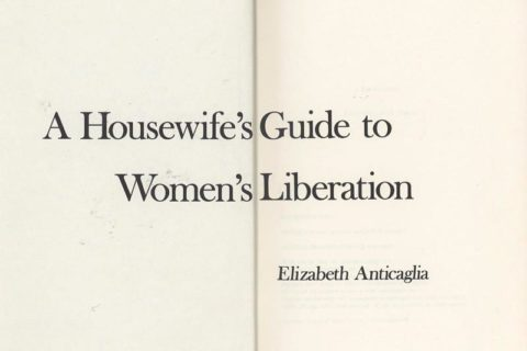 housewife's guide to women's liberation