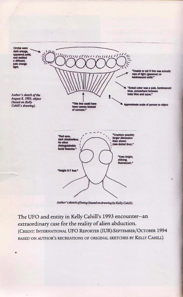 artist's rendering of alien