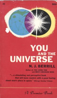 you and the universe