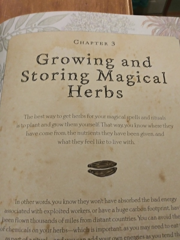 Growing and Storing Magical Herbs