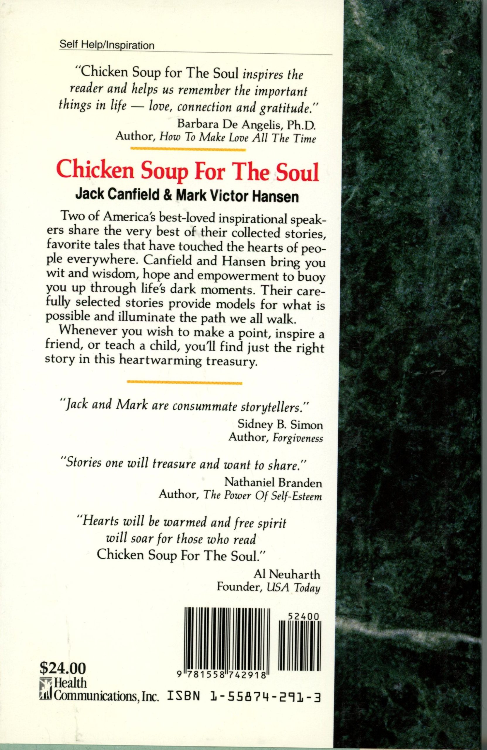chicken soup back cover
